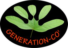 Generation-co
