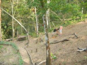 DSCN9839 taf ladang aceng
