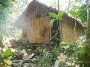 1ere cabane, année 2016